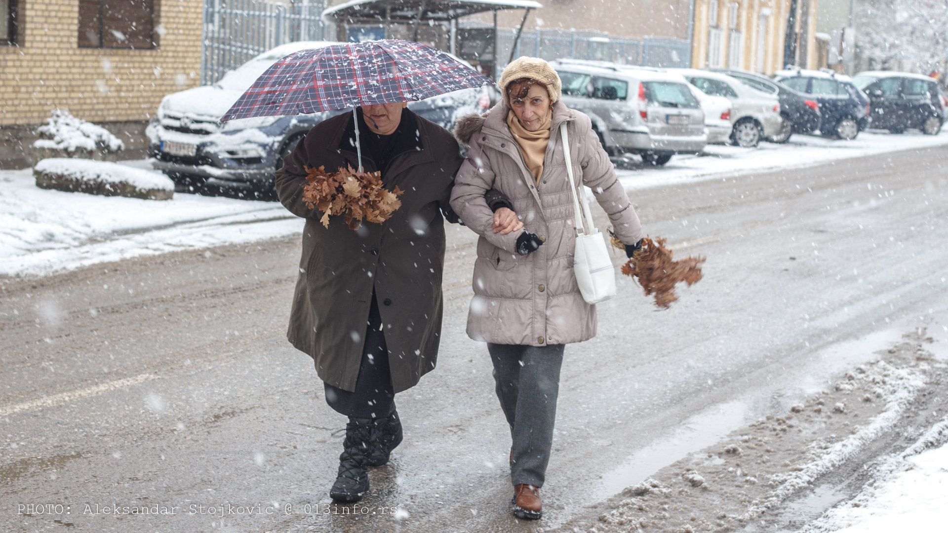 Badnjak u Pančevu 2019.