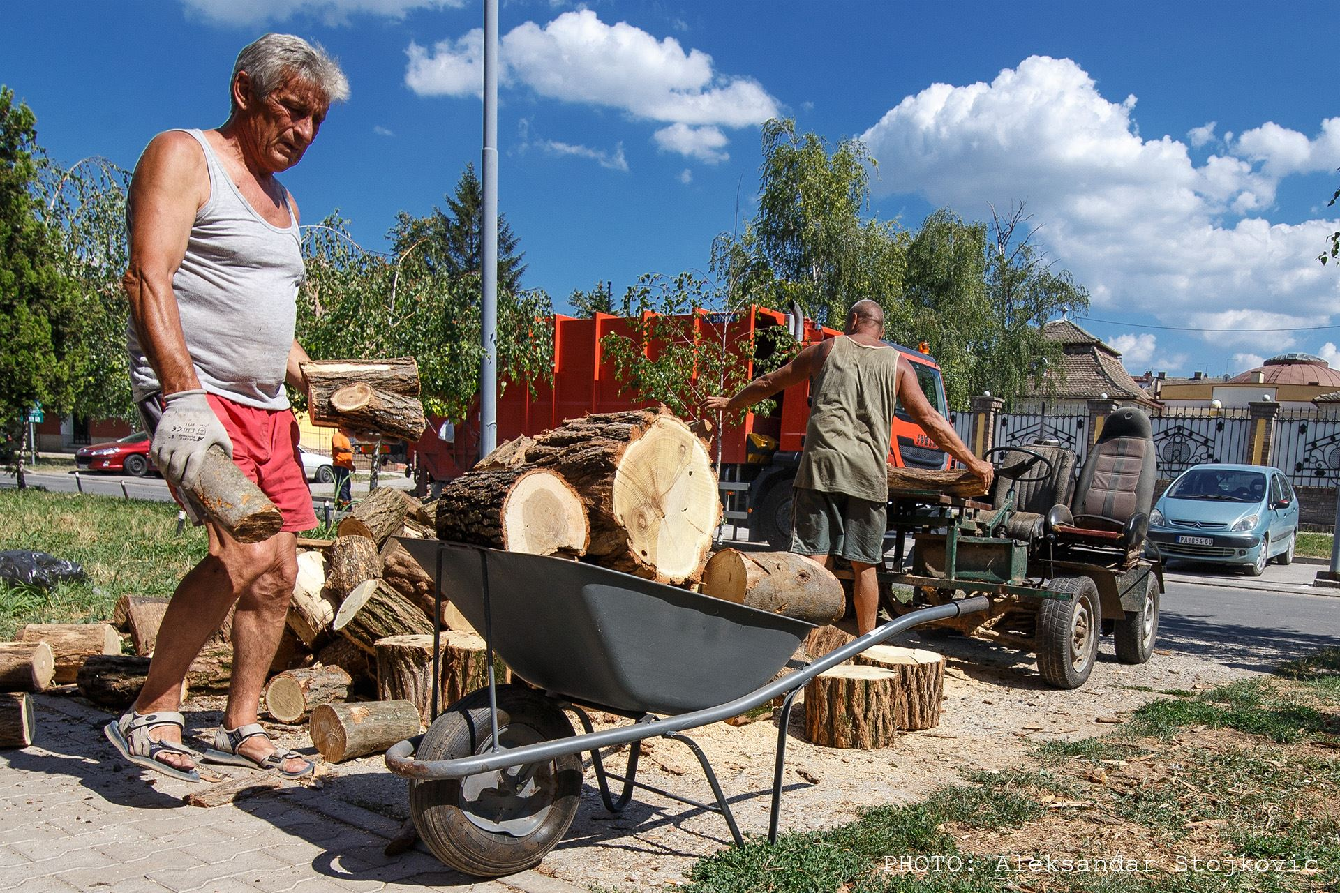 Sečenje i unošenje drva