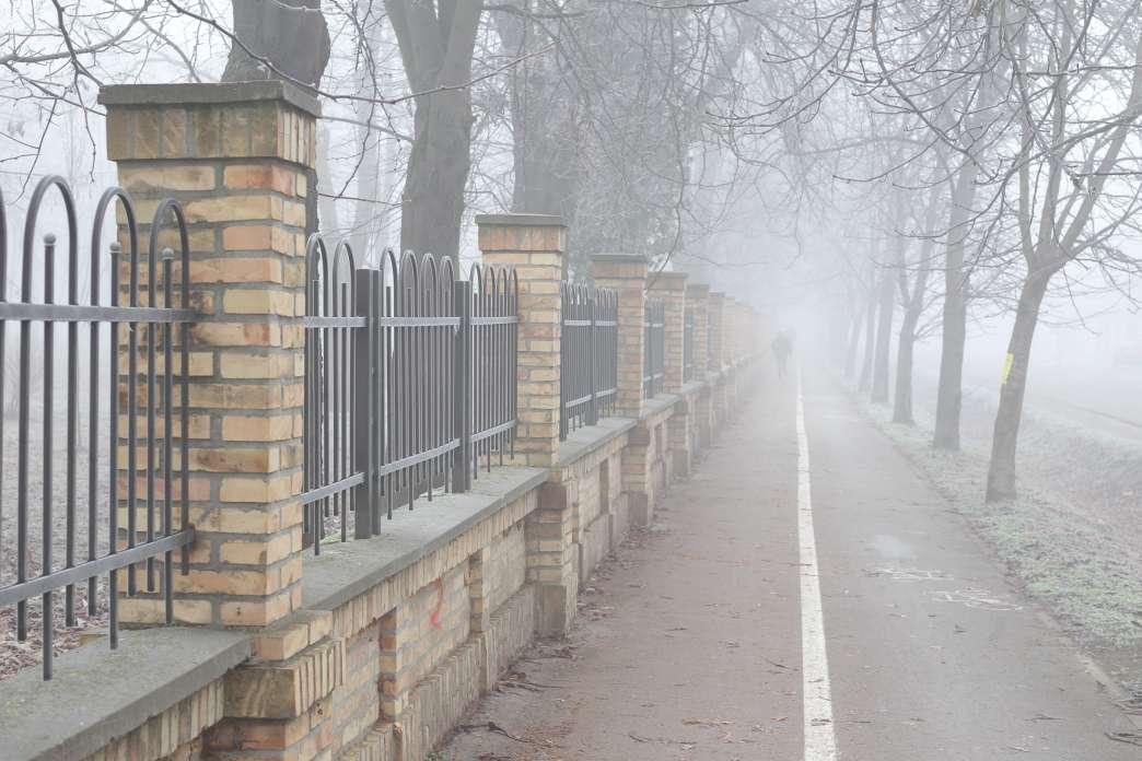 Magla u Narodnoj bašt Pančevo