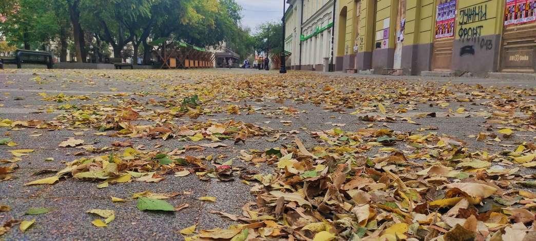 Pančevo jesen