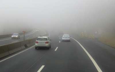 Automobili u magli