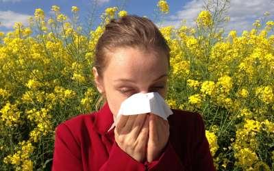 Alergija na polen